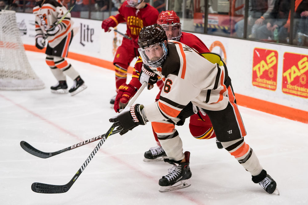 #17 Falcons' season ends after heartbreaking 3-2 OT loss to Wildcats